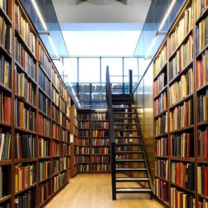 Библиотеки Иванищ